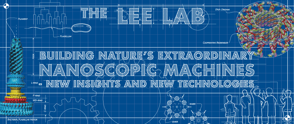 image - LEE LAB WEB BANNER A